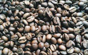 Arabica Specialty Coffee
